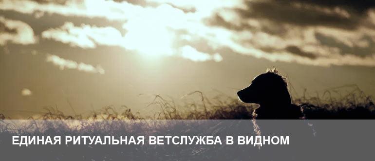 Усыпление и кремация животных Видное